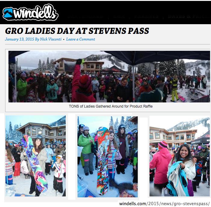 2015 01 13 Snow Media Windells